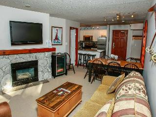 Aspens #219, 2 Bdrm, Ski-in Ski-out, Serene Forest View, Free Wifi - United States vacation rentals