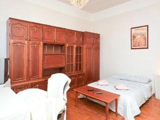 BOGO Apartment in the very heart of Moscow, 1 room - Moscow vacation rentals