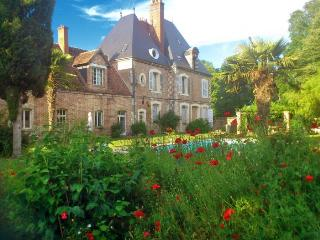 Chateau Le Brun - Loire Valley vacation rentals