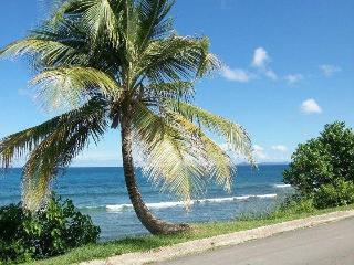 Bravos Sun and Sea Lower Guesthouse - Isla de Vieques vacation rentals