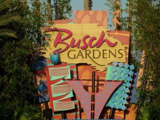 Busch Gardens, USF, Convention Center and Golf - Tampa vacation rentals