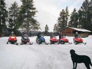 MeadowView, Snowmobile & Cross Country Ski Cabin - Seeley Lake vacation rentals