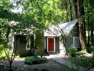 AT LAST - Guerneville vacation rentals