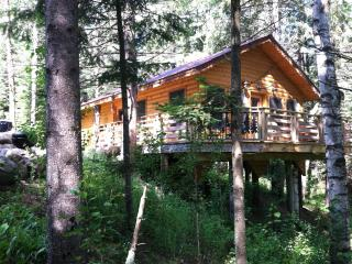 "Forest Cabin ""Eleanor"" - Shevlin vacation rentals"
