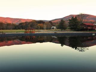 Hawksbill Retreat 1 Bedroom Cabin - Luray vacation rentals