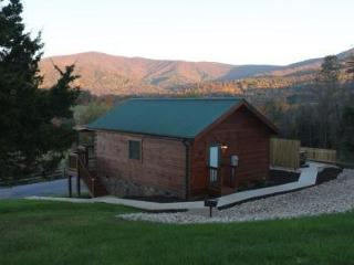 Hawksbill Retreat 1 Bedroom Cabin - Luray vacation rentals