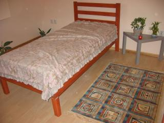 Apartment Carpe Diem - Belgrade vacation rentals
