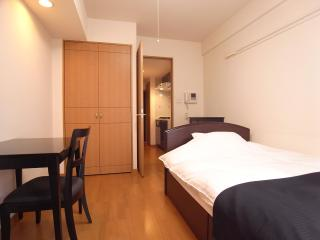 Palace Studio Ginza Itchome (Furnished Apartment) - Tokyo vacation rentals