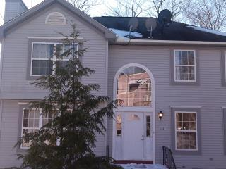 Beautiful 4 BR Pocono Home Near Camelback & Casino - Tobyhanna vacation rentals