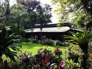 The entire Chosa del Manglar Resort, Puerto Jimenez OSA Peninsula - Puerto Jimenez vacation rentals