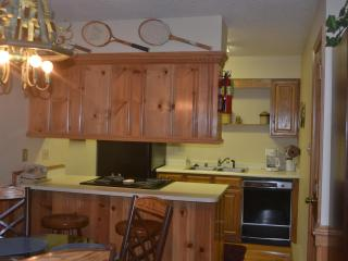 Angel Fire, NM - Snow Fire Condo - Angel Fire vacation rentals