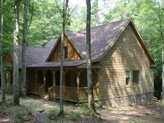 Perfect House with Internet Access and A/C - Fayetteville vacation rentals