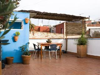 Very nice apartment with private terrace - Barcelona vacation rentals