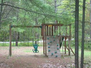 Child Friendly 3 Bedroom on Lower Buckhorn Lake - Buckhorn vacation rentals