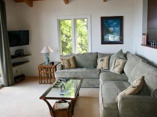 Cozy Large 1bdrm 1bath aprt - Kailua vacation rentals