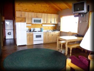 Caribou Cottage at Mt. Peale! - 3 bdrm, sleeps 6! - Monticello vacation rentals
