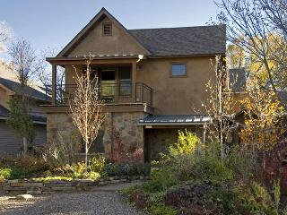 Downtown Carbondale - Walk in and Feel at Home - Carbondale vacation rentals
