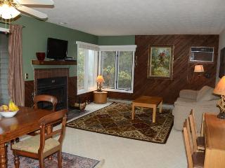 Wintergreen -- Beautiful 2BR/2BA - Great Rates - Central Virginia vacation rentals