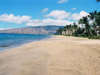 Kihei Kai #23 Ocean View! Condo is only 72 Steps To Sugar Beach. Great Rates! - Kihei vacation rentals