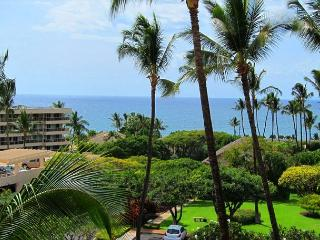 Kihei Akahi D412 Oceanview 1/1 across from Kamaole Beach ll  Great Rates! - Kihei vacation rentals