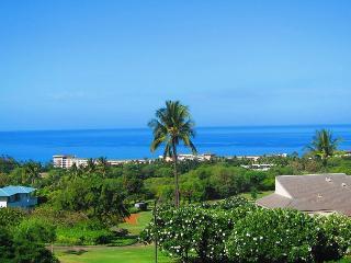 Wailea Ekolu #1108 2 Bd. 2Ba. Premier Ocean View!   SUMMER SPECIAL May - Aug. - Wailea vacation rentals