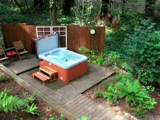 Little Red House! Hot Tub! Walk to Golf Course! Nearby Wineries! 3 for 2! - Guerneville vacation rentals