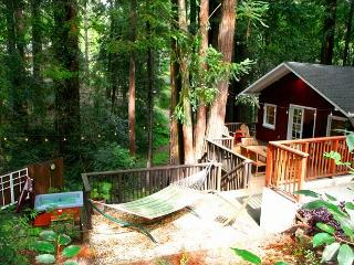 """Little Red House Plus!"" Hot Tub!  Golf Course! Redwoods/Wineries 3 for 2! - Guerneville vacation rentals"