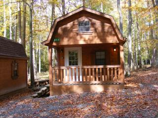 Amish Cabin - Fayetteville vacation rentals