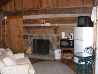 Charming Cabin with Internet Access and A/C - Fayetteville vacation rentals