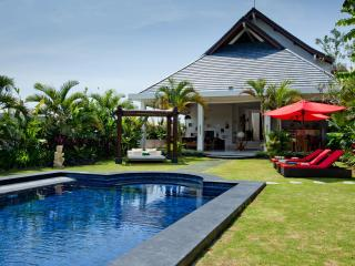 Perfect Villa with Internet Access and A/C - Kerobokan vacation rentals