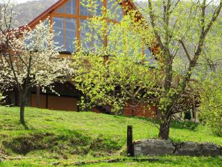 Comfortable 4 bedroom Chalet in Bran with Deck - Bran vacation rentals