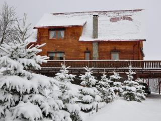 The Carpathian Log Home - Bran vacation rentals