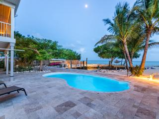 Sandy Beach, Direct Ocean, Pool, Dock & Lagoon - Marathon vacation rentals