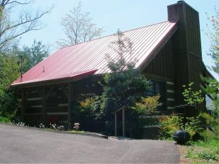 Smoky Mountain Log Cabin - Sevierville vacation rentals