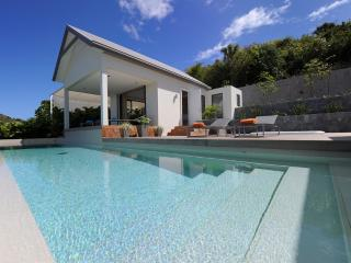 Arte at Flamands, St. Barth - Luxury Villa, Ocean View, Large Heated Pool and - Flamands vacation rentals