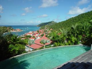 Fabrizia at Gustavia, St. Barth - Ocean Views, Pool and Jacuzzi, Very Private - Gustavia vacation rentals
