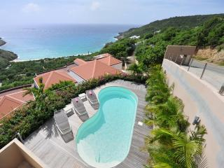 Gouverneur Cliff at Gouverneur, St. Barth - Ocean Views, Short Drive To Beach, Very Private - Gouverneur vacation rentals