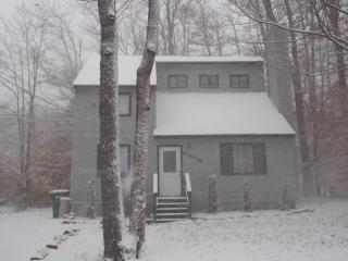 DISCOUNTED FOR THIS WEEKEND Cozy Cottage Just reno - Tobyhanna vacation rentals