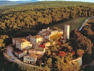 One Bedroom Villa at Castello di Montalto in Chianti - Siena vacation rentals