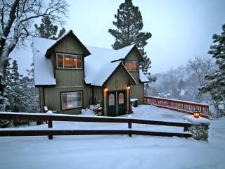 Moose Lodge - passes to private beach clubs - Lake Arrowhead vacation rentals