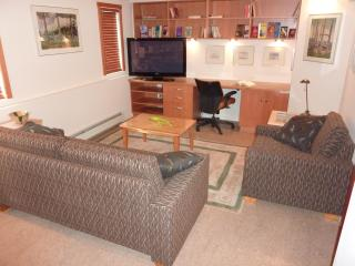 2 bedroom Apartment with Internet Access in Vancouver - Vancouver vacation rentals