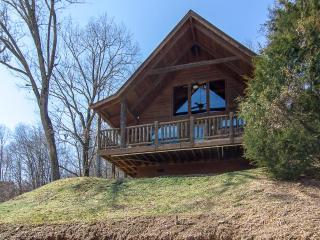 Master BR- Sleeps 4/Feb $99 per Nite-Pet-Yes - Pigeon Forge vacation rentals