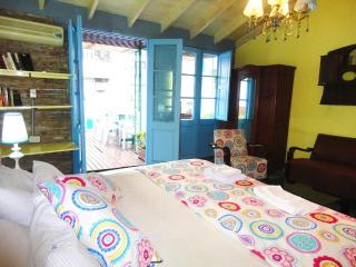 Stylish Loft, Big Terrace, Solarium, Barbecue - Buenos Aires vacation rentals