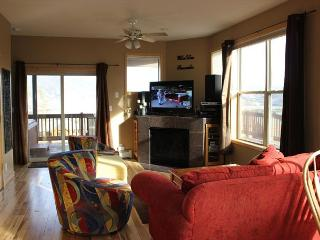 MR76 Excellent Townhouse w/Fireplace, Wifi, Private Hot Tub, Garage - Silverthorne vacation rentals