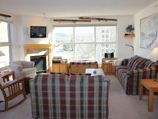 TW210 Pretty Condo w/Common Hot Tub, Mountain Views, Fireplace, Garage - Frisco vacation rentals