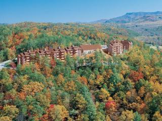 2 BR A101 Condo Mountain Views - Gatlinburg vacation rentals