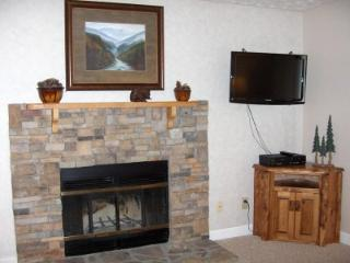 Condo A103 - Gatlinburg vacation rentals