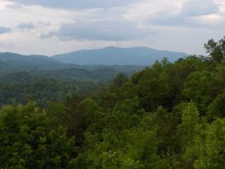 1 BR B102 Condo Mountain Views - Gatlinburg vacation rentals