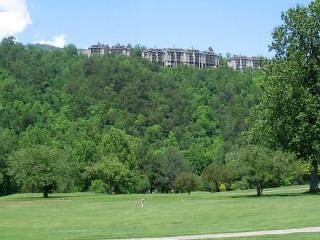 1 BR Condo New Furniture E107 - Gatlinburg vacation rentals