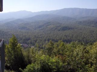 Condo D303 - Gatlinburg vacation rentals
